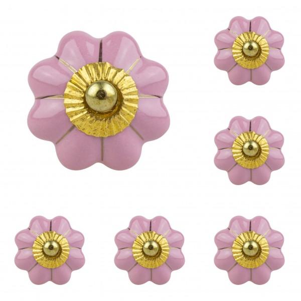 Jay Knopf 6er Möbelknopf Set 073 JKGH rosa gold